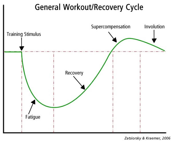 Workout recovery curve